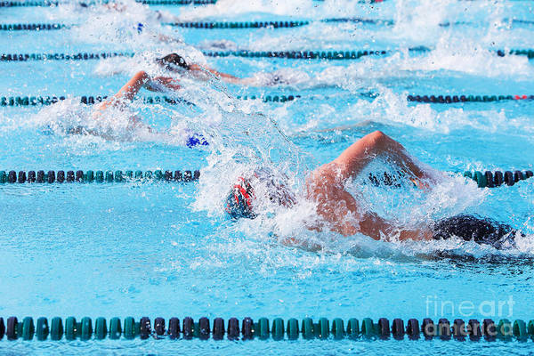 Freestyle Photograph - Freestyle Swimmers Racing by Suzanne Tucker