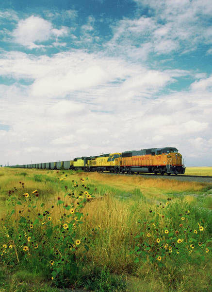 Wall Art - Photograph - Freight Train Passing Through A Field by Medioimages/photodisc