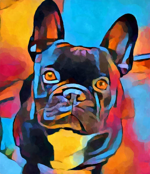 Wall Art - Painting - French Bulldog 5 by Chris Butler