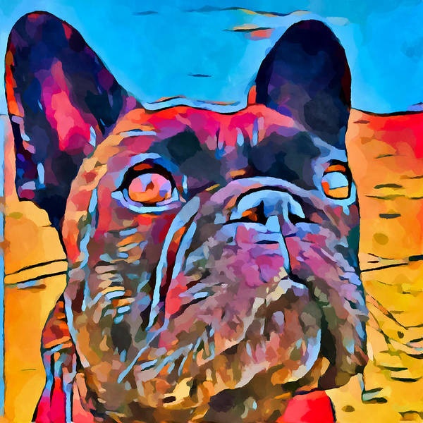 Wall Art - Painting - French Bulldog 6 by Chris Butler