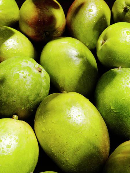 Mangos Photograph - Fresh Mangos by Stilllifephotographer