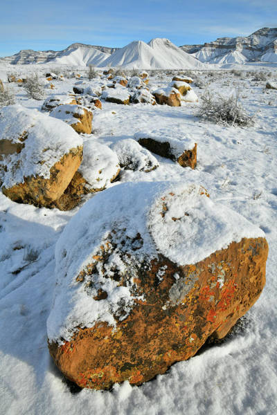 Photograph - Fresh Snow On Book Cliffs Boulders by Ray Mathis