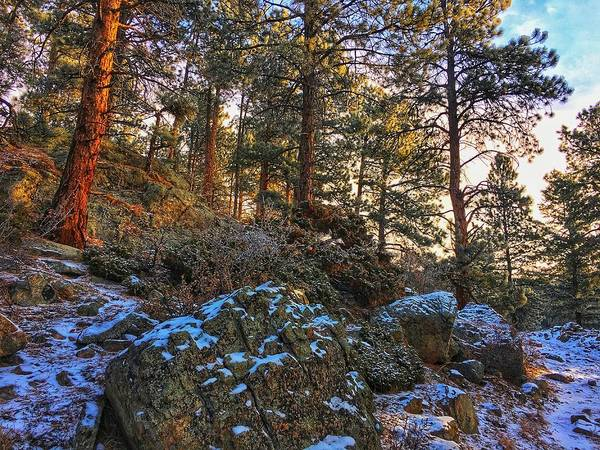 Photograph - Fresh Snow On Fillius Ridge by Dan Miller