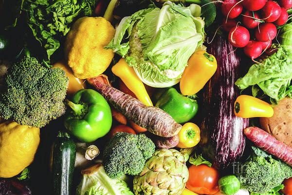 Photograph - Fresh Vegetables Gathered In A Vegetable Garden. by Joaquin Corbalan