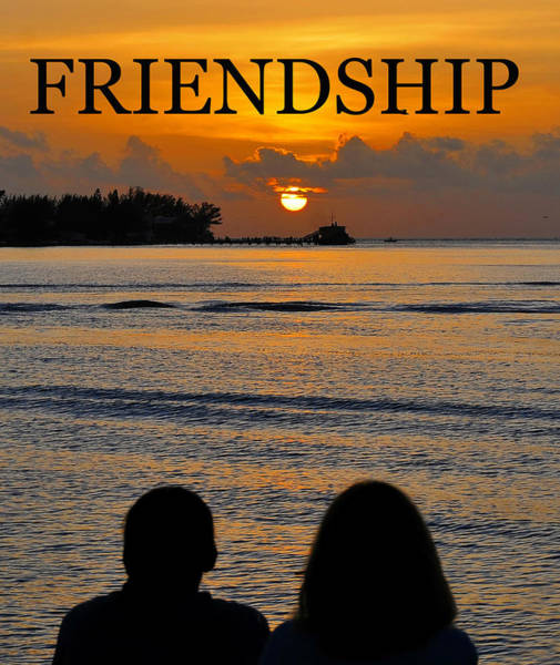Wall Art - Photograph - Friendship Poster A by David Lee Thompson