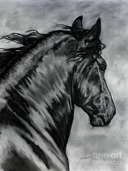 Friesian Drawing - Friesian Horse Beauty Painting by Lucka