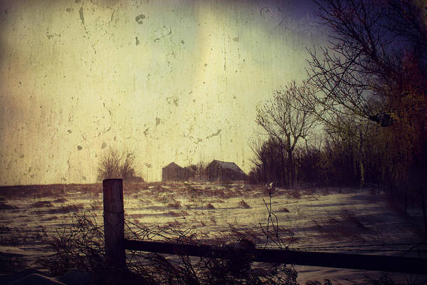 Photograph - Frigid  by Julie Hamilton