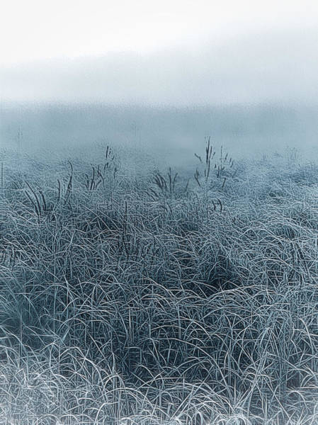 Photograph - Frigid Morn by Jill Love