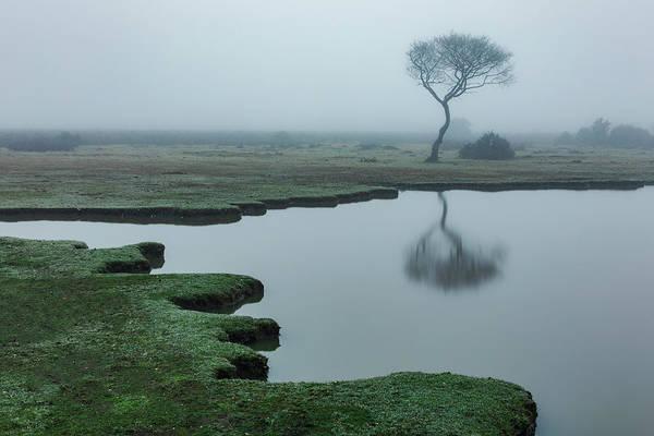 Wall Art - Photograph - Fritham - England by Joana Kruse