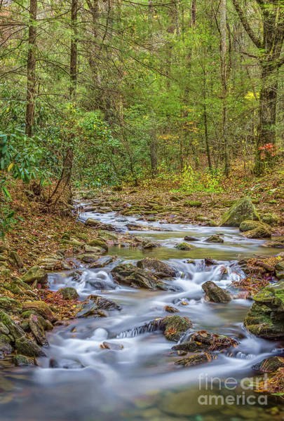 Photograph - Frogtown Creek by Bernd Laeschke