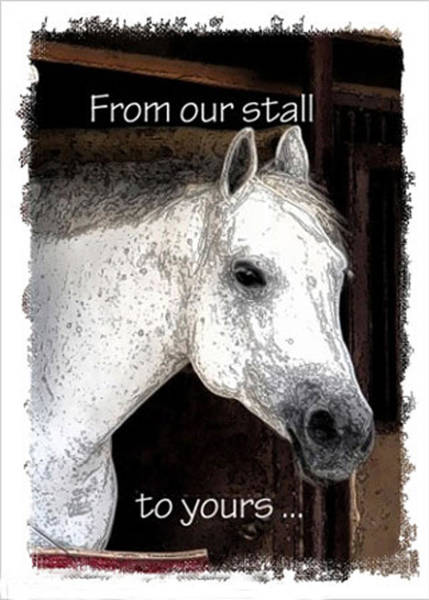 Photograph - From Our Stall To Yours by Jerry Sodorff