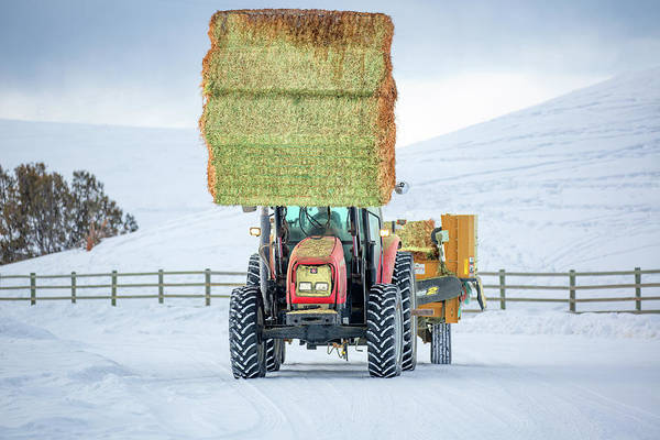 Bales Photograph - Front End Loader by Todd Klassy