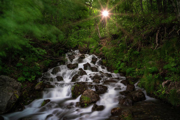 Photograph - Frontier Water  by Roy Nelson