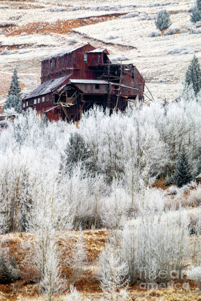 Photograph - Frost On Abandoned Mining District by Steve Krull