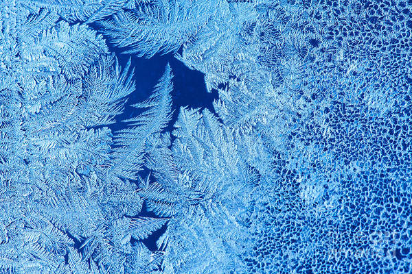 Wall Art - Photograph - Frost Patterns On Window Glass by Andrey Krepkih