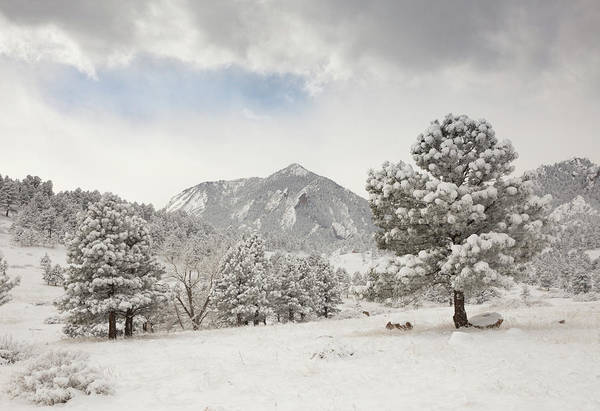 Wall Art - Photograph - Frosty Flatirons Meadow by Bridget Calip