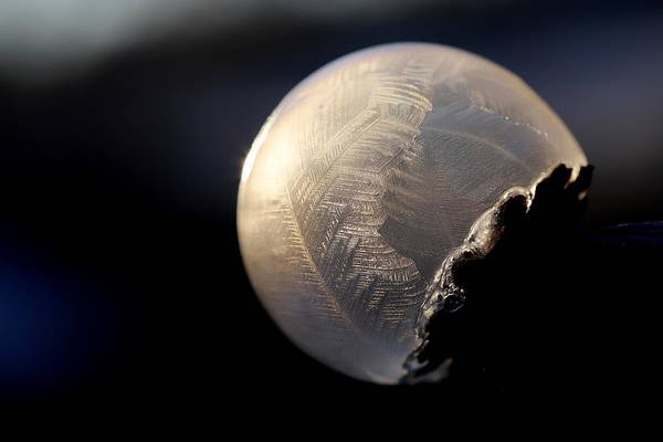Wall Art - Photograph - Frosty Soap Bubble 1 by Heike Hultsch