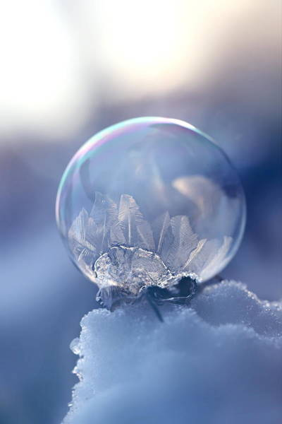 Wall Art - Photograph - Frosty Soap Bubble 10 by Heike Hultsch