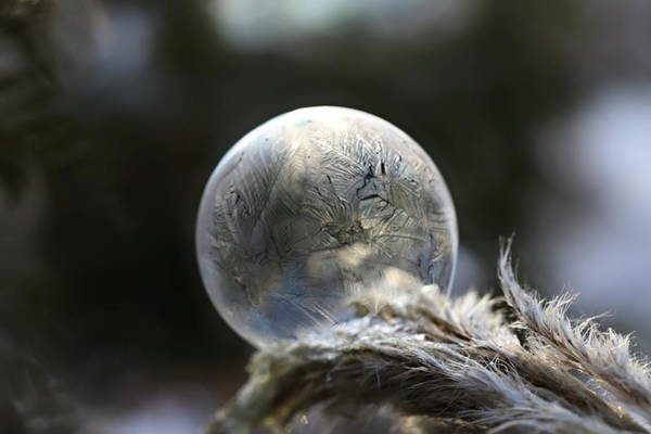 Wall Art - Photograph - Frosty Soap Bubble 15 by Heike Hultsch