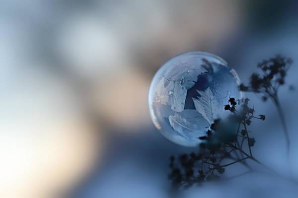 Wall Art - Photograph - Frosty Soap Bubble 5 by Heike Hultsch