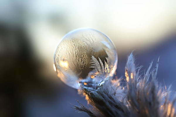 Wall Art - Photograph - Frosty Soap Bubble 6 by Heike Hultsch