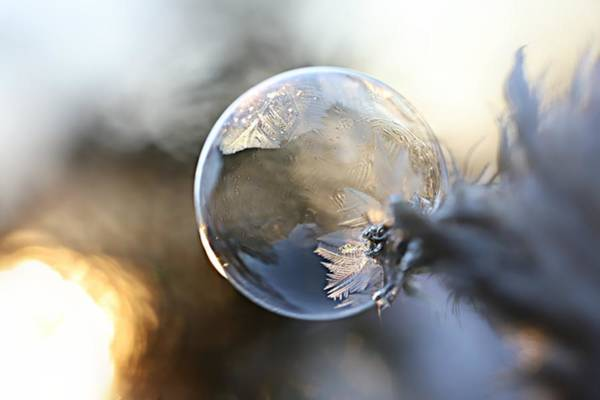 Wall Art - Photograph - Frosty Soap Bubble 7 by Heike Hultsch