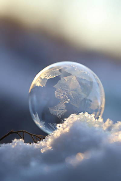Wall Art - Photograph - Frosty Soap Bubble 8 by Heike Hultsch
