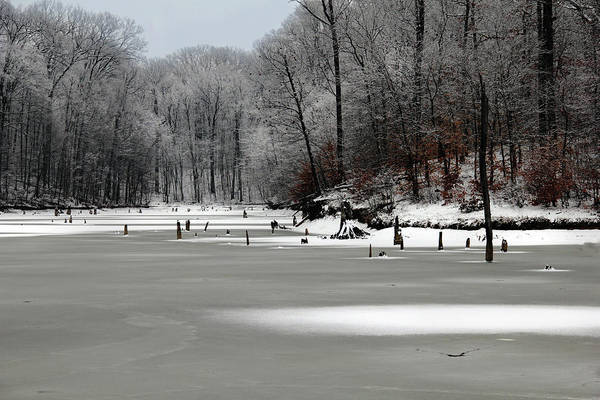Photograph - Frozen Alum Creek by Angela Murdock