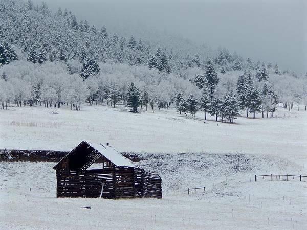 Photograph - Frozen Barn by Dan Miller