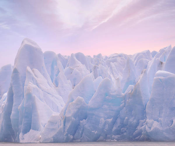 Photograph - Frozen Giants by Giovanni Allievi