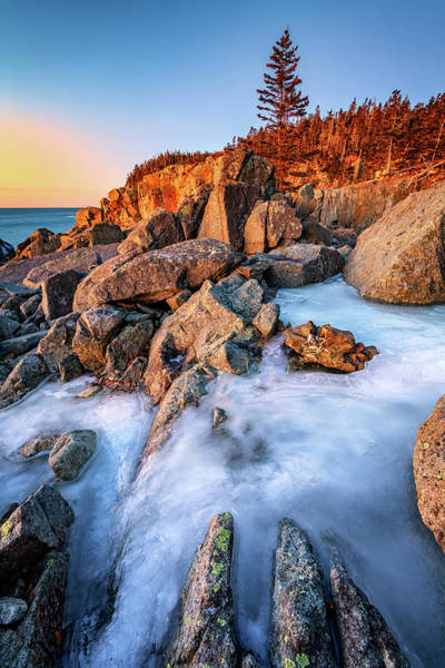 Berk Wall Art - Photograph - Frozen Morning At Quoddy Head by Rick Berk