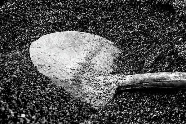 Hakon Photograph - Frozen Shovel by Hakon Soreide