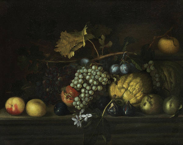 Gladiolus Painting -  Fruits Still Life by Agostino Verrocchi