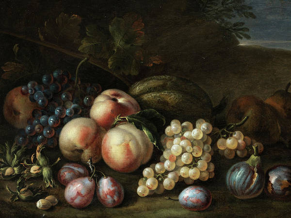 Tulip Bloom Painting - Fruits Still Life by Flemish masters