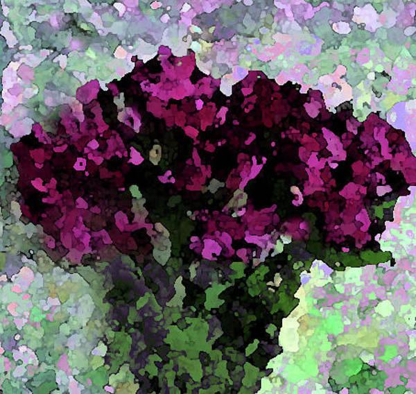 Digital Art - Fuchsia Bouquet by Corinne Carroll