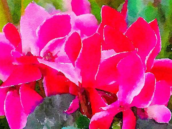 Mixed Media - Fuchsia Floral Abstract by Susan Rydberg