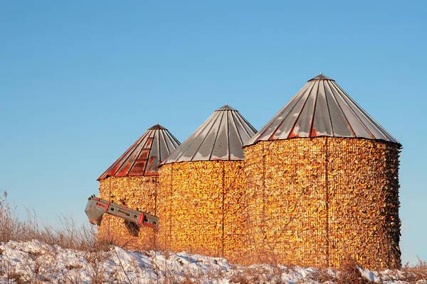 Photograph - Full Corn Cribs by Todd Klassy