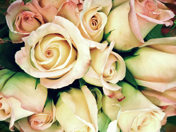 Wedding Bouquet Photograph - Full Frame Cross Processed Rose Bouquet by Travelif