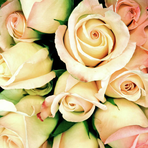Wedding Bouquet Photograph - Full Frame Rose Bouquet Vintage Style - by Travelif