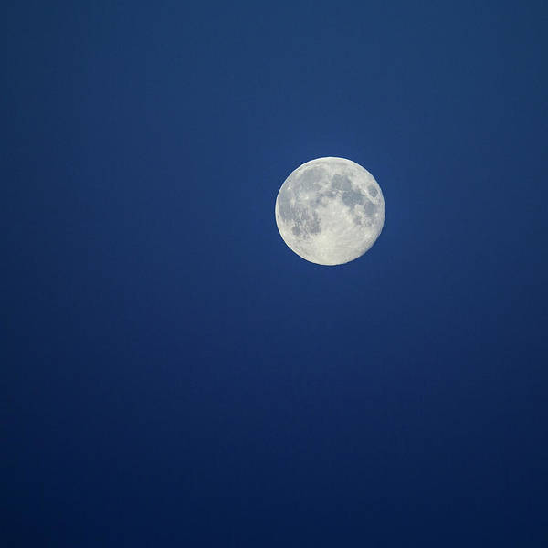 Reykjavik Photograph - Full Moon by Arctic-images