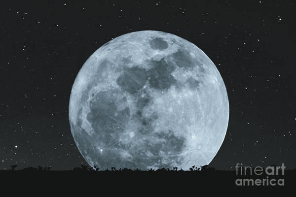 Full Moon At Night With Stars With Art Print