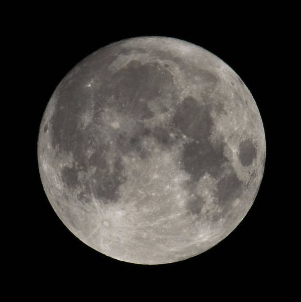 Photograph - Full Moon August 2019 Square by Terry DeLuco