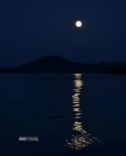Photograph - Full Moon Fishtail by Susie Loechler