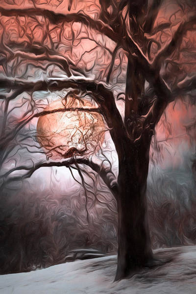 Photograph - Full Moon On A Wintry Night by Debra and Dave Vanderlaan