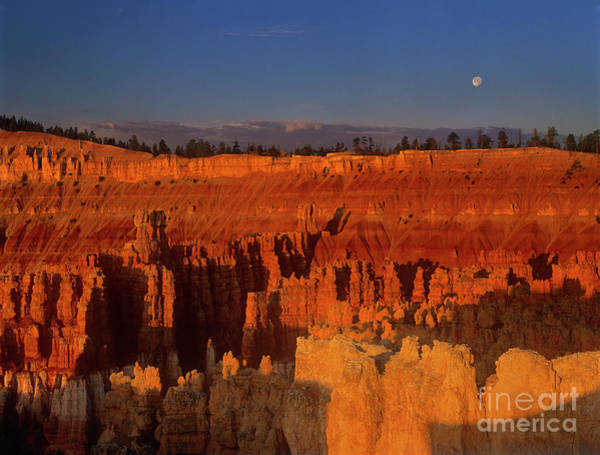 Photograph - Full Moon Over Silent City Bryce Canyon National Park Utah by Dave Welling