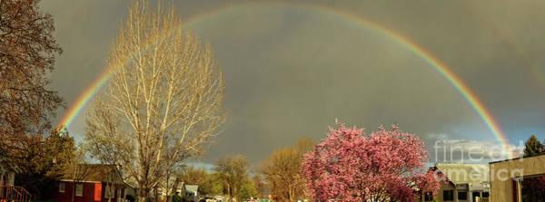 Wall Art - Photograph - Full Rainbow by Robert Bales