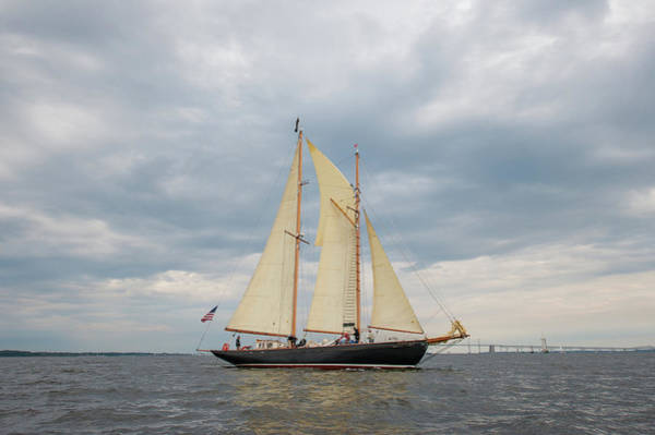 Photograph - Full Schooner Sails by Mark Duehmig