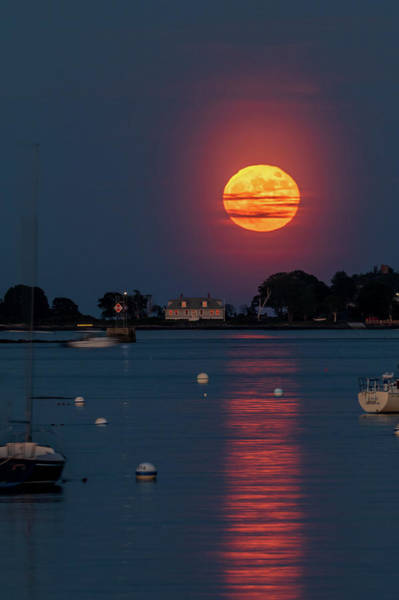 Photograph - Full Strawberry Moon Rise by Darryl Hendricks