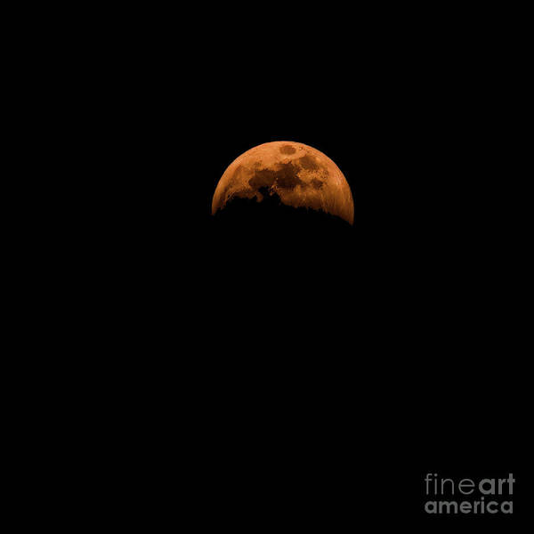 Photograph - Full Wolf Moon Eclipse by Jon Burch Photography