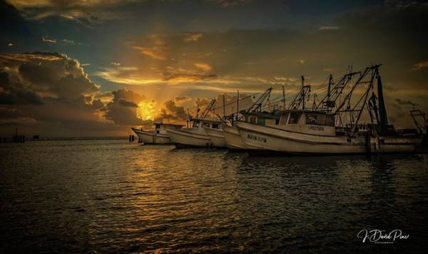 Photograph - Fulton Harbor by David Pine